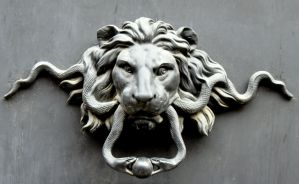 Lions Rome ... by DemonSD