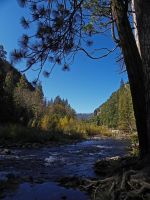Autumn Colors by the Merced River by Synaptica