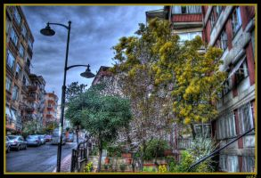 The Garden by ISIK5