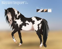 .: [ Bayaro Stallion #056 ] :. sold! by Zahkiin