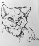 Meow by LeRainbowTurtle