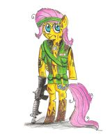 Sgt Fluttershy- This is 'Nam, baby by Daniel-SG