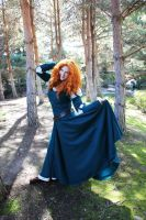 Brave - The Princess by Eli-Cosplay