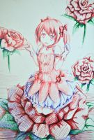 Rose madoka by packge