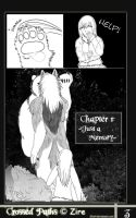 Crossed Paths- page-3-english by Zire9