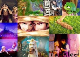 Tangled Background by Love-And-Be-Loved