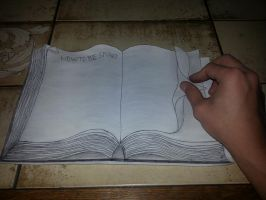 3D Book Drawing - How not to be stupid by Kerle3
