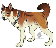 Norwegian Lundehund Mix: SOLD by Makoce