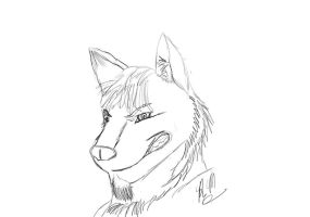 Wolf Sketch by OutBack-Art