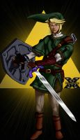 Adult Link by zabadoohp