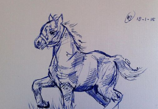 #18 Drawing a horse a day 2015 by Nienke15