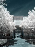 Infrared VII by ilimel