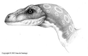 Velociraptor Portrait by Red-Dilopho