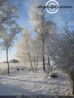 Winter a sweden by Angelic-Fighter