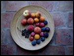 Have Some Fruit by zasu