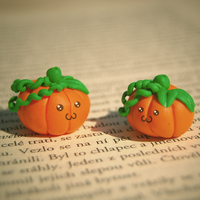Two Pumpkins by Zluvka