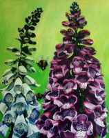 Foxgloves in Summer by tonyarama