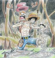 one piece, the swamp by heivais