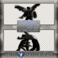 +Photopack png de Hush Hush (book) by MarEditions1