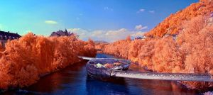 Murinsel by MiscReant1512