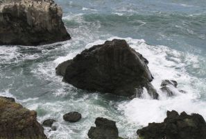 Mendocino Shore III by Cynnalia-Stock