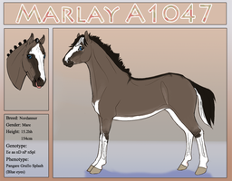 A1047 Marlay by Welshen