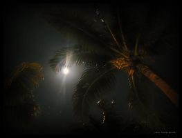 Nighttime Negril by leavenotrase