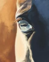 Eye by Elsouille