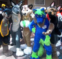 Anthrocon 2011 Fun by OdinWolf