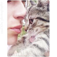 Love cat by maduphoto