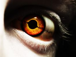 eye crop1 by darkstar797