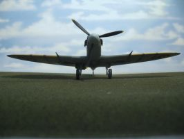 Spitfire,s Business End by TomCatDriver