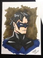 Nightwing by sirandal