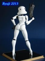 Helloo stormtrooper 05 by celsoryuji