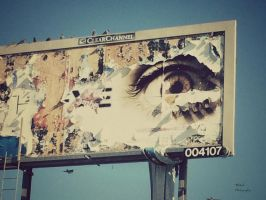 The Eye by atomicranchgal
