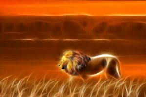 Lion - Sunset 1 by m3-k3