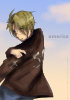 APH Sunset America by Espeonsilverfire2