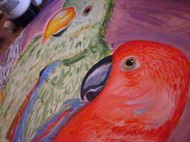 Acrylic Eclectus parrots(close up) by TheDorkyDerpster