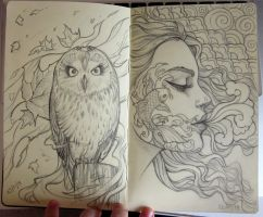 Moleskine sketch 2 by Sabinerich