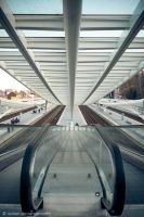 Guillemins IV by Evilien