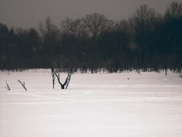 Tracked Frozen Lake by KBeezie