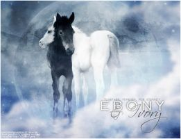 Ebony and Ivory by the7eventhrider