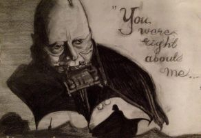 Vader's eyes / Redemption by JuanaSunfall