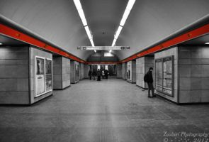 Following the red line III by Zouberi