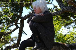 Shion in the trees :D by FlyteWizard