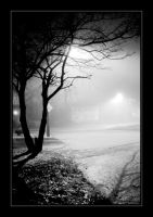 The Mist at Casieri Court by B30wuLf