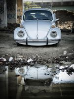 Reflection of the Beetle by ScottJWyatt