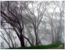 fog around I by Zlata-Petal