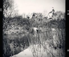 old winter by restive-wench