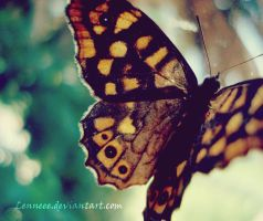 .Butterfly. by Lenneee